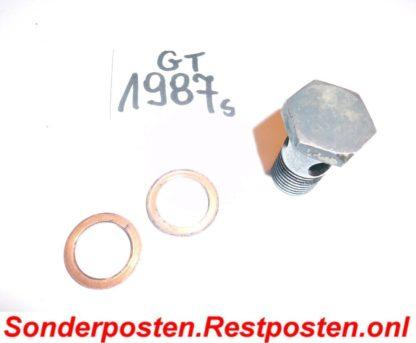 Hatz Motor 2L30 S 2L 30 S Teile: Schraube an Dieselpumpe Kraftstoffpumpe GT1987S