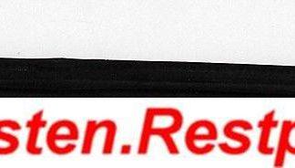 Opel Sintra 3,0 Gummi Einstigsleiste Schiebetür