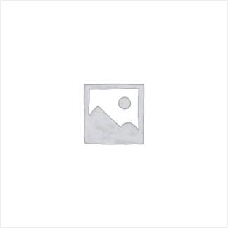 Citroen Xantia X1 Schalter Heckscheibenheizung