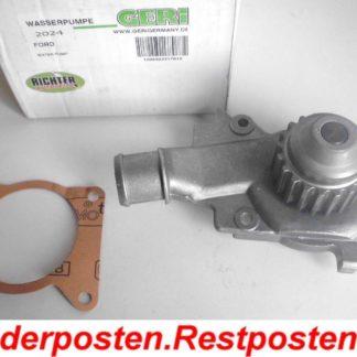 Wasserpumpe Geri 317010 Ford | NT406